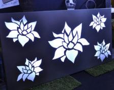 agave-lightbox