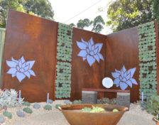 succulent-set